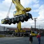 Crane Pic