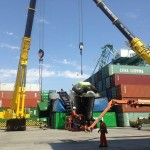 Client's forklift toppled onto containers.